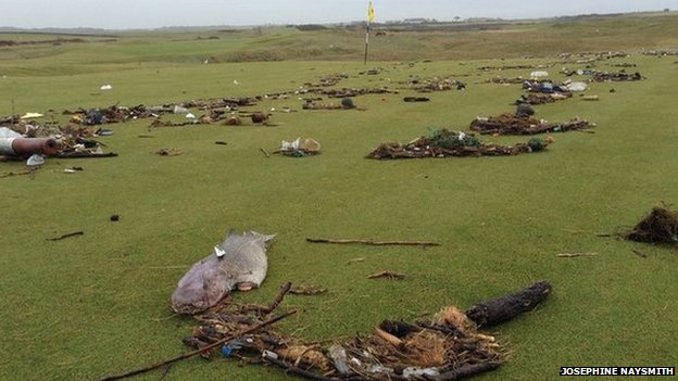 Josephine Naysmith took this picture of the wreckage on Royal Porthcawl Golf Club's course including the carcass of a large fish